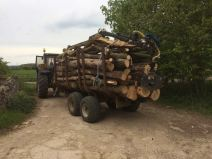Trailer Of Timber From A Woodland Thinning Job