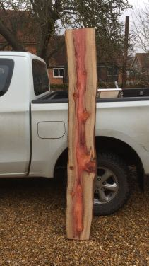 Redwood Board Before Being Made Into A Shelf