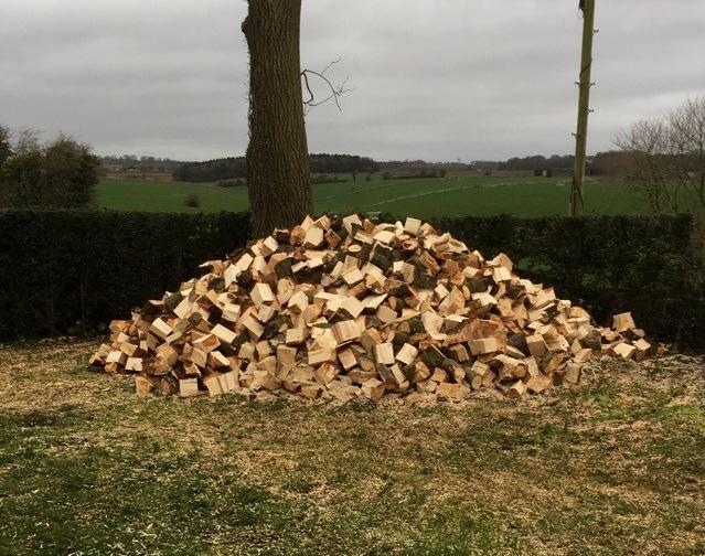 Split Logs